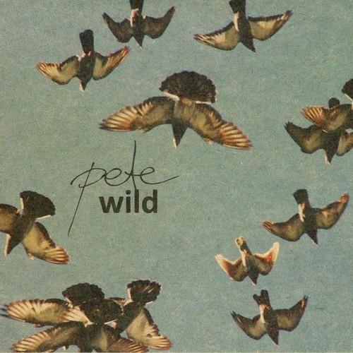 Pete Wild