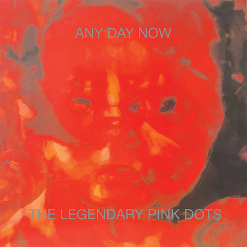 Legendary Pink Dots - Any Day Now (Exp) (Rmst)
