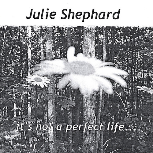 It's Not a Perfect Life