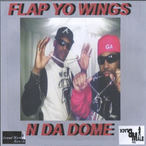 Flap Yo Wings