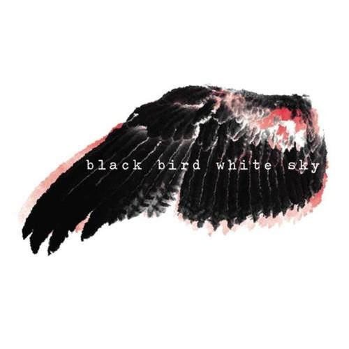 Black Bird White Sky