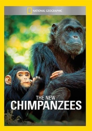 New Chimpanzees