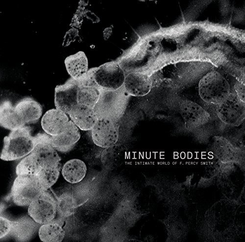 Minute Bodies: Intimate World Of F. Percy Smith