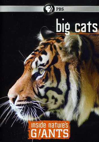 Inside NatureS Giants: Big Cats