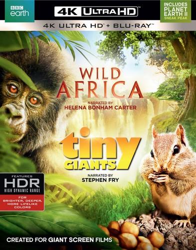Wild Africa /  Tiny Giants