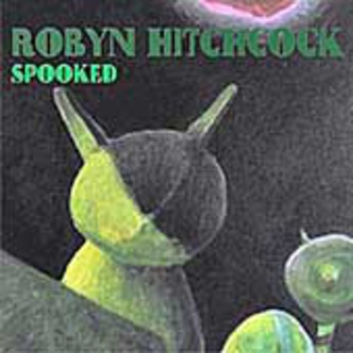 Robyn Hitchcock - Spooked