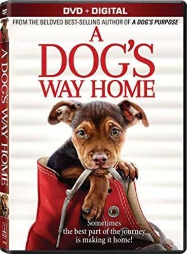 A Dog's Way Home [Movie] - A Dog's Way Home