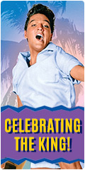 Elvis Presley sale