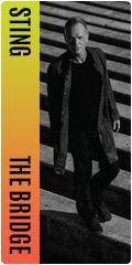 Sting on sale