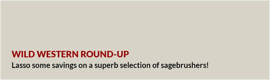 Sagebrush savings with our Wild Western Round Up