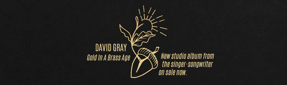 David Gray on sale